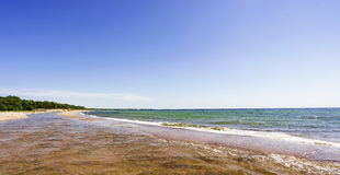 Natural swedish beach in summertime Stock Photos