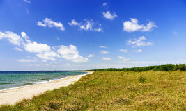 Natural swedish beach in summertime Royalty Free Stock Photos
