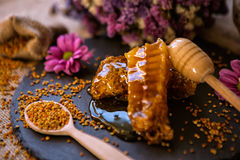 Natural sweet honeycombs and pollen on table Stock Image