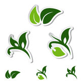 Natural symbols - leaf, plant - stickers Royalty Free Stock Photos
