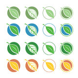 Natural symbols with leaf Stock Images