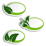 Natural symbols, nature bio icon with leaf and plant, oval sticker for eco product Stock Images
