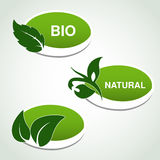 Natural symbols - stickers with leaf, plant Stock Photography