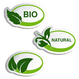 Natural symbols - stickers with leaf, plant Royalty Free Stock Photography