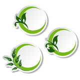 Natural symbols - stickers with plant royalty free illustration