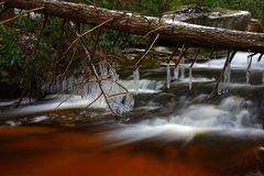 Natural tannin colored stream in the mountains Stock Photography