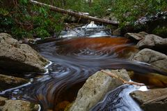 Natural tannin colored stream in the mountains Stock Image
