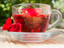 Natural tea from rose-petals Stock Images
