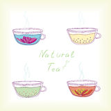 Natural tea Stock Photo