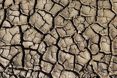 Natural texture. Closeup of wet cracked ground Royalty Free Stock Image