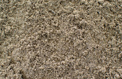 Natural texture of the sand Royalty Free Stock Images