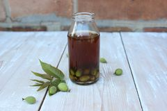 Natural tincture of green nuts royalty free stock photo