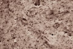 Natural tinted texture of the test Royalty Free Stock Image