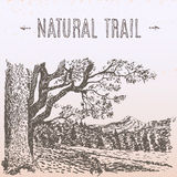 Natural trail illustration royalty free illustration