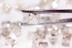 Natural  transparent diamond in tweezers Royalty Free Stock Image