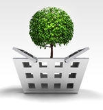 Natural tree as trade merchandise Royalty Free Stock Images