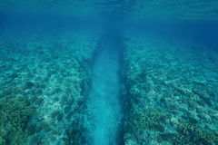 Natural trench underwater sea into coral reef Royalty Free Stock Photo