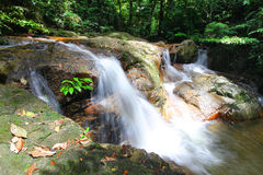 Natural Tropical Waterfalls Royalty Free Stock Photo