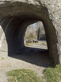 Natural tunnel on Doftana river valley Royalty Free Stock Photography