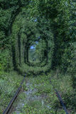 Natural. Tunnel of love formed by trees in Romania Stock Photo