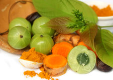 Natural Turmeric and Amla Stock Photography