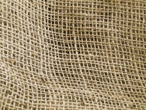 Natural Undulating Fibres Royalty Free Stock Image