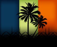 Natural urban Art. Two palms between simple colors in the dark Royalty Free Stock Photos
