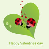 Natural Valentines Day background Stock Photography