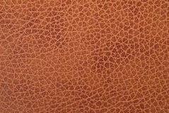 Natural veal leather texture. Royalty Free Stock Photos
