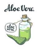 Natural Vector Aloe vera illustration isolated objects Royalty Free Stock Photos
