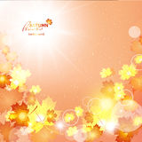 Natural vector illustration of beautiful autumn background with. Illustration of fuzzy soft warm autumn background Royalty Free Stock Photo