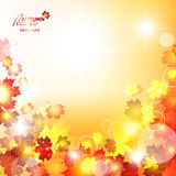 Natural vector illustration of beautiful autumn. Background with sun rays and maple leaves. Orange falling leaves Stock Image