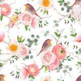 Natural vector seamless pattern with cute robin birds. And bouquets of peachy roses and ranunculus in japanese style Stock Image