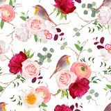 Natural vector seamless pattern with cute robin birds and bouquets. Of peachy roses, white and burgundy red peony, orchid, eucalyptus, green plants mix and Royalty Free Stock Image