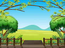 Natural view of nature Royalty Free Stock Photography