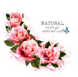 Natural vintage greeting card with roses. Stock Photos
