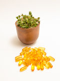 Natural vitamin vs supplements. The healthy diet. Stock Photography