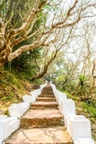 Natural walk way up to temple at mountain in Luangprabang loas. Natural walk way up to temple at hill in Luangprabang loas Royalty Free Stock Images