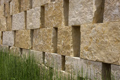 Natural wall and grass Stock Photography