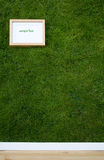 Natural wallpaper. Wallpaper with grass texture and frame with copy-space Stock Image