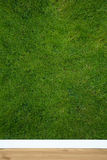 Natural wallpaper. With grass structure Stock Images