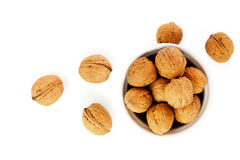 Natural walnuts isolated on white Stock Images