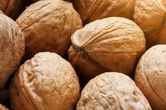 Natural Walnuts in shell background dramatic contrast. Natural walnut background pattern texture Abstract walnuts heap pattern background Blurred edges frame royalty free stock images