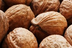 Natural Walnuts in shell background dramatic contrast. Natural walnut background pattern texture Abstract walnuts heap pattern background Blurred edges frame stock images