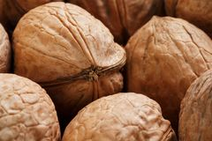Natural Walnuts in shell background dramatic contrast. Natural walnut background pattern texture Abstract walnuts heap pattern background Blurred edges frame stock photo