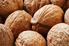 Natural Walnuts in shell background dramatic contrast. Natural walnut background pattern texture Abstract walnuts heap pattern background Blurred edges frame royalty free stock photography