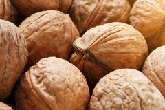 Natural Walnuts in shell background dramatic contrast. Natural walnut background pattern texture Abstract walnuts heap pattern background Blurred edges frame royalty free stock photos