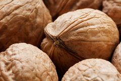 Natural Walnuts in shell background dramatic contrast. Natural walnut background pattern texture Abstract walnuts heap pattern background Blurred edges frame stock image