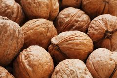 Natural Walnuts in shell background dramatic contrast. Natural walnut background pattern texture Abstract walnuts heap pattern background Blurred edges frame royalty free stock image