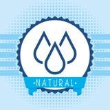 natural water Στοκ εικόνες με δικαίωμα ελεύθερης χρήσης